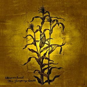"Woven Hand - ""The Laughing Stalk"""