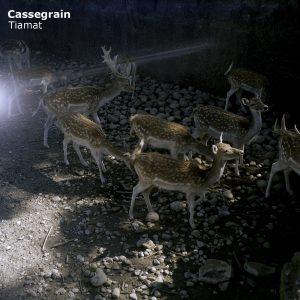 """Cassegrain - """"Tiamat"""""""